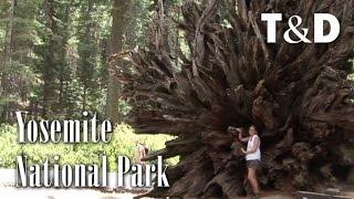 Yosemite National Park - Best Landscapes - Travel & Discover