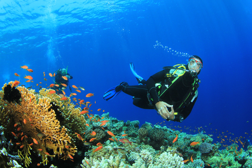 Bali & Gili Islands- Scuba diving special
