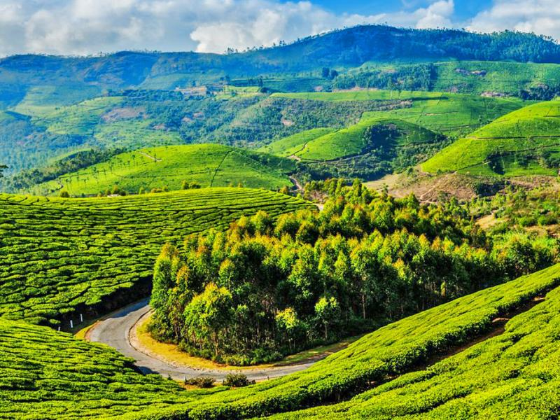 Exploring Coonoor and Ooty