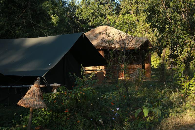 Jungle Camps - Unexplored Corbett