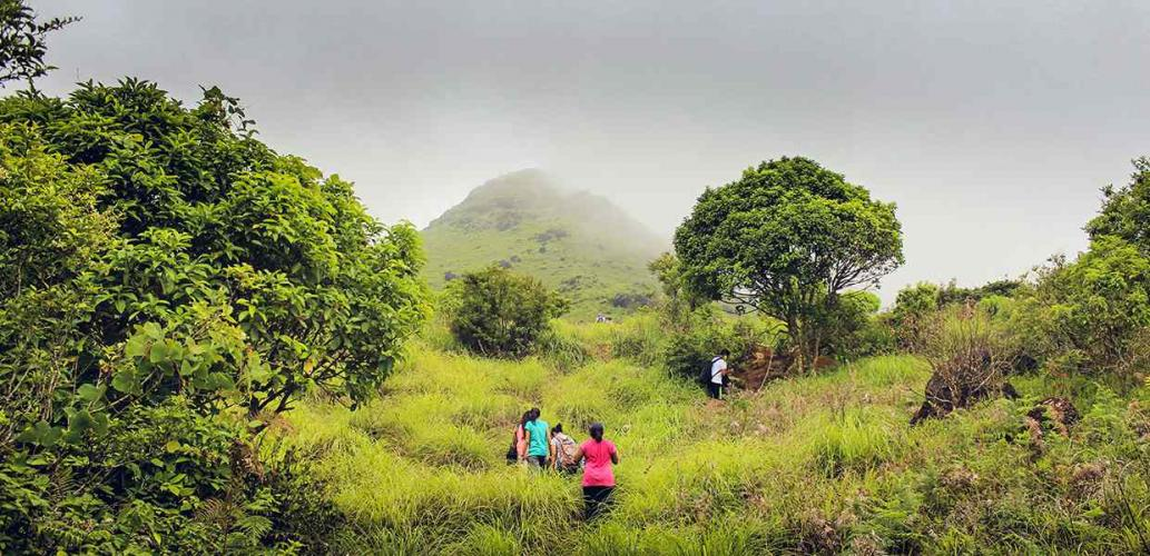 Tadiandamol Coorg Trek - Plan The Unplanned