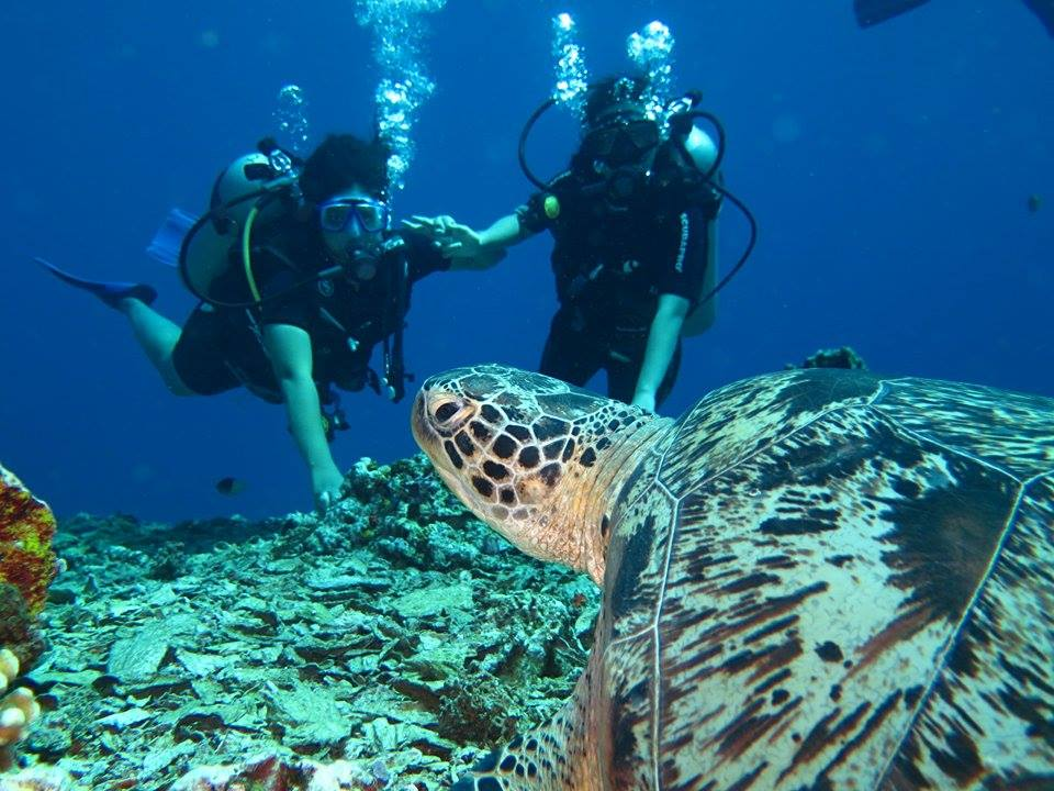 Blissful Bali with Gili Islands