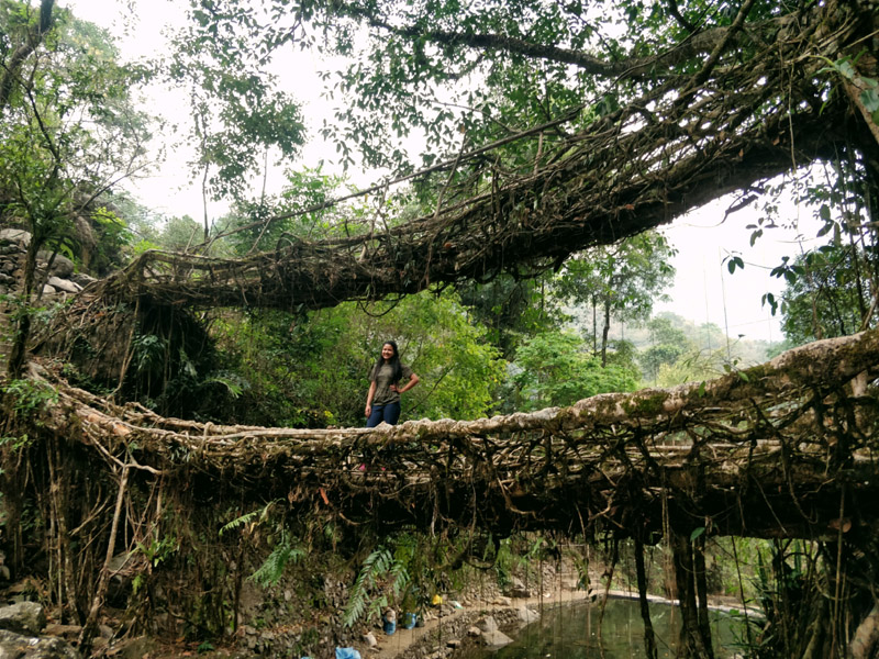 Meghalaya On Foot   Plan The Unplanned