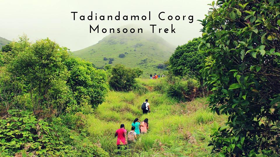 Tadiandamol Coorg Monsoon Trek   Plan The Unplanned