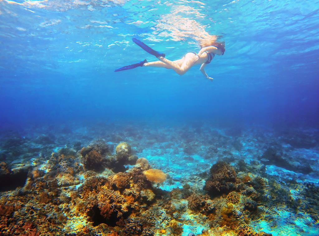 Bali & Gili Islands- 16th Feb to 23rd Feb
