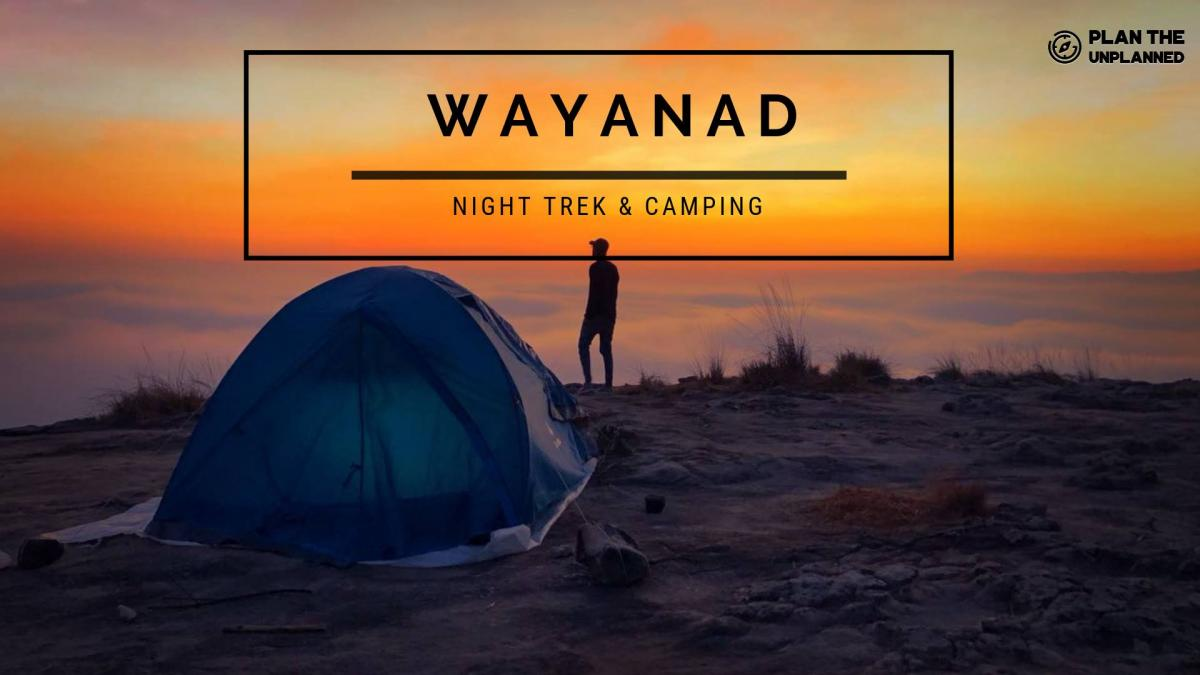 Wayanad Night Trek & Camping |Plan The Unplanned