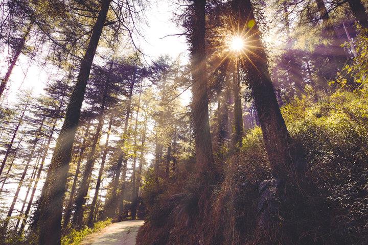 Beyond Himachal Explorer