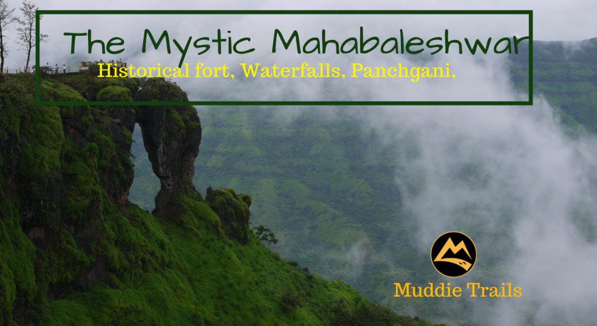 The Misty Mahabaleshwar Trip, Waterfalls, Dhom Lake